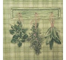 Салфетка 33х33 см  3-х слойн. Травы на кухне