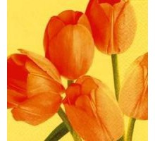 Салфетка 33х33 см   3-х слойная, VIVA, Дуэт тюльпанов