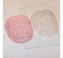 Мозг, пластиковая формочка для мыла